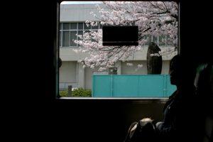 内野雅文「車窓から」